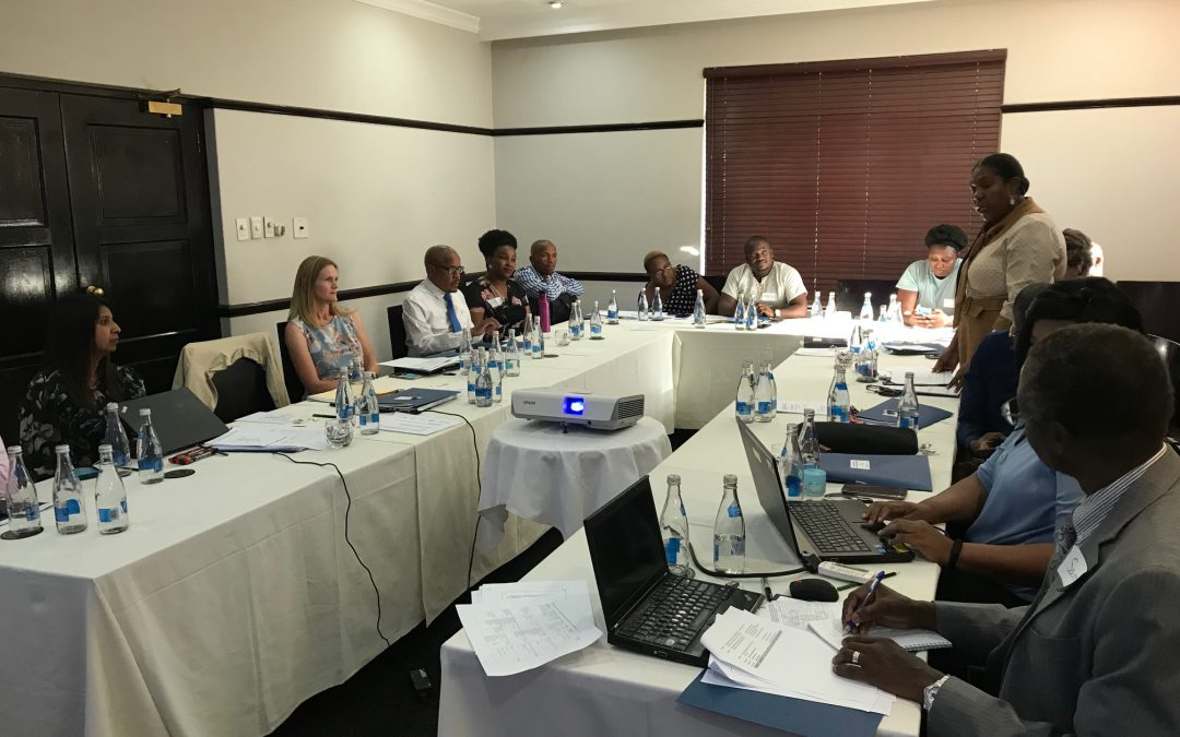 SOAR project (Supporting Operations AIDS Research) advisory meeting